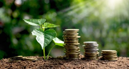 Energiebelasting (EB) & Opslag Duurzame Energie (ODE) elektriciteit en gas